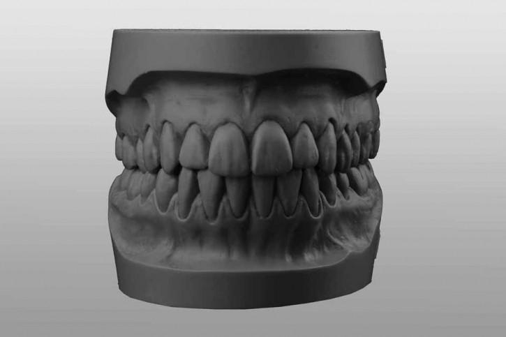 Study-Model-Set A1 grey