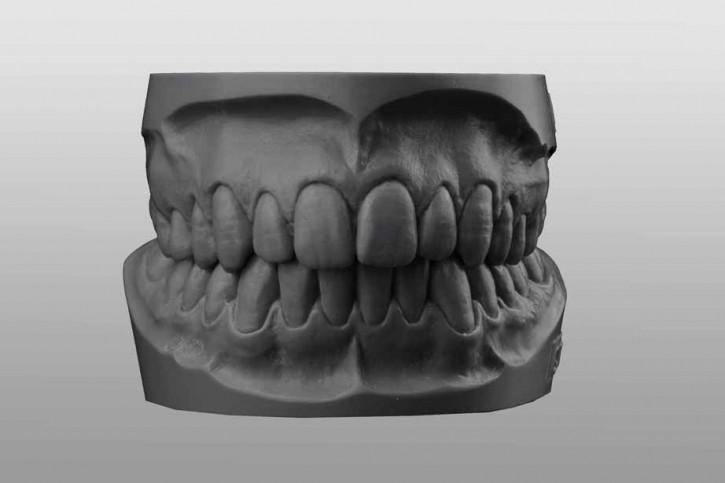 Study-Model-Set Q19 grey